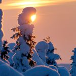 Winter Tours in Finnish Lapland
