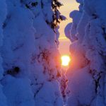Lapland Tours and Trips for Families