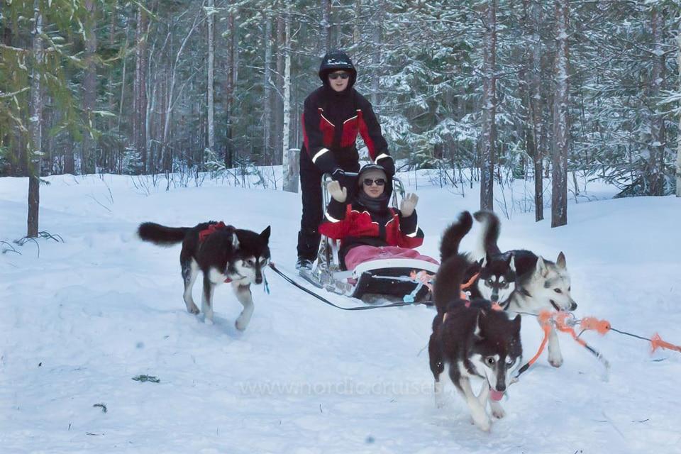 Husky Safari in Finnish Lapland