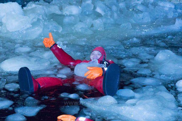 The Arctic Swimmer