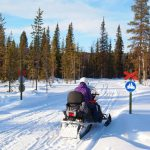 Snowmobile Traffic Signal in Lapland