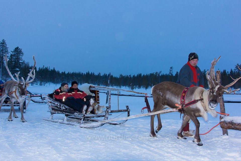 Reindeer sleigh ride in Rovaniemi