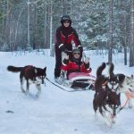 Holidays to Lapland